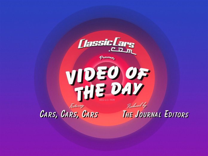 video of the day