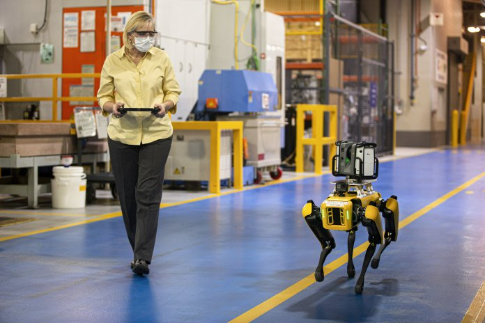 robotic dogs
