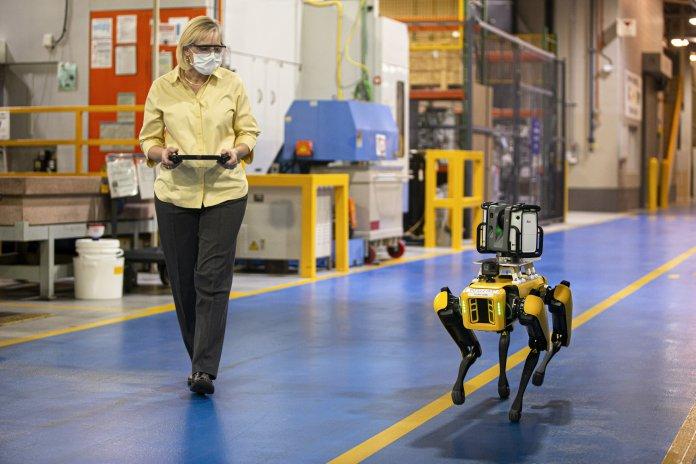 robotic dogs